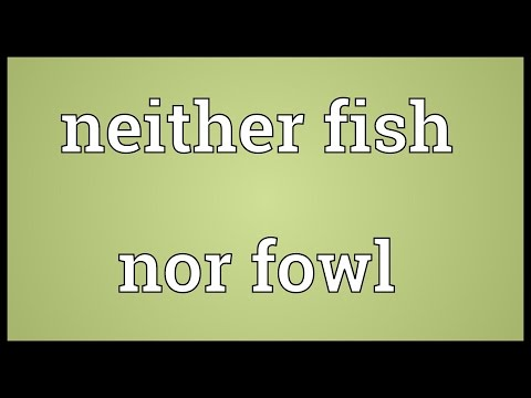Neither Fish Nor Fowl Meaning