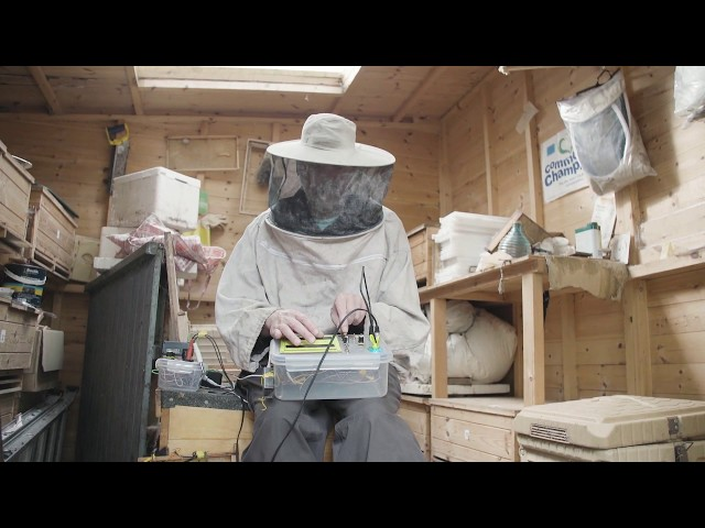 Bioni Samp - Beehive Techno (Short Documentary)