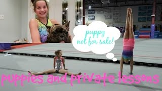 Hayley and Annie Back in the Gym   Puppy Not Included   Limited Edition Leo Pre Sale   Acroanna