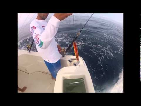 cabo san lucas offshore experience