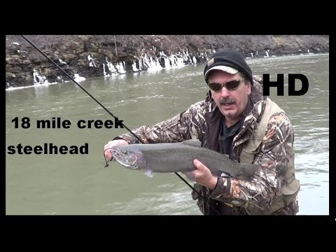Download Youtube: 18 MILE CREEK STEELHEAD