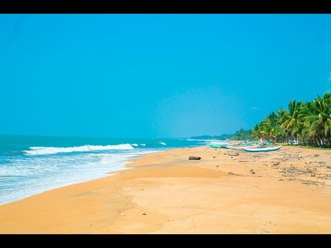 Best Sri Lanka Holiday