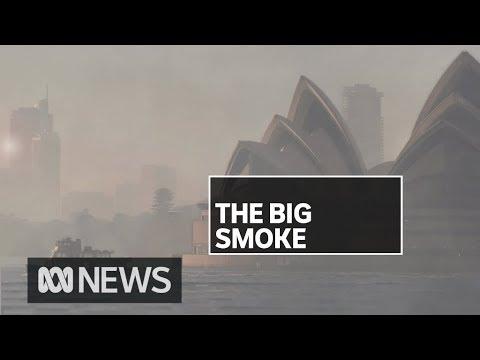 Sydney's Air Quality Reaches 12 Times Hazardous Levels | ABC News