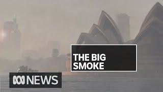 Sydney's air quality reaches 12 times hazardous levels   ABC News