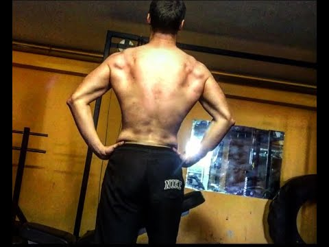 3 Most Important Back Exercises For Building a Butterfly Back! Tips