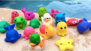 Sea Animals For Babies Learn Colors  Turtle Fish Shark Toy Videos For Kids