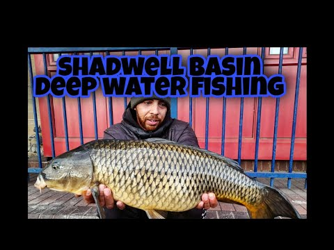 Deep Water Carp Fishing At (Shadwell Basin)
