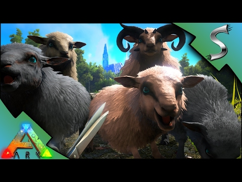 OVIS TAMING! BREEDING & IMPRINTING! SHEEP WOOL FARM! MUTTON FARMING! - Ark: Survival Evolved [S3E48]