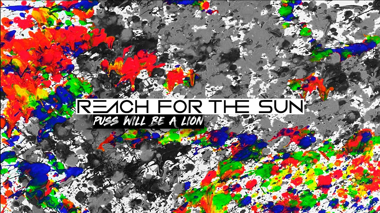 Reach For The Sun - Puss Will Be A Lion