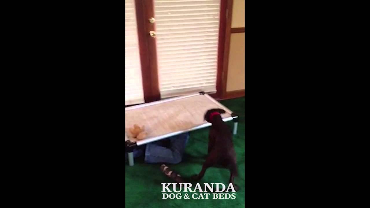 how to make a kuranda bed