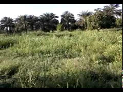 Sudan Travel Part 4