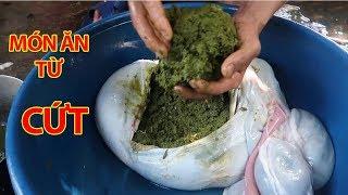 12 Món Ăn Kì Dị Nhất Thế Giới - Việt Nam Có Nhiều Món