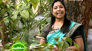 All clip of krishdeepan | BHCLIP COM