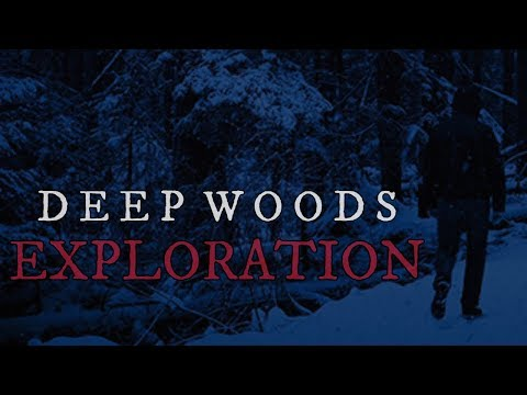 10 TRUE Scary Deep Woods Exploration Stories (Vol. 2)