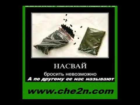 насвай это сила (www.che2n.com)