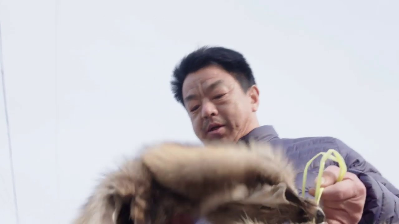 "Global #fur industry declares war on #animalrights over ""fake"" skinning  alive video"