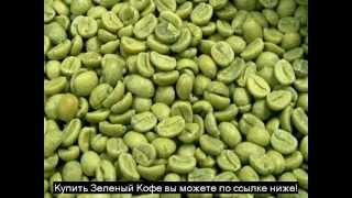 Купить зеленый кофе для похудения
