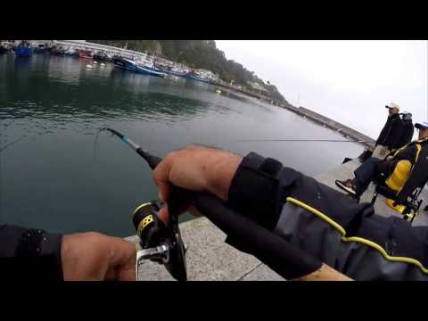 Feeder fishing ai cefali di Hondarribia