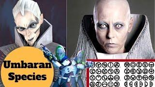 The MOST Alien of Star Wars Aliens? - Umbaran Species Lore - Star Wars Species & Races Explained