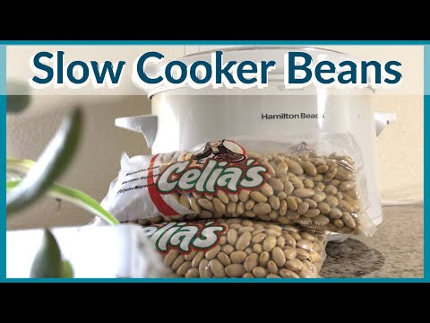 The BEST Slow Cooker Vegan Beans | 1 Pot Of Beans, 4 Easy Frugal Meals | No Oil Refried Bean Recipe