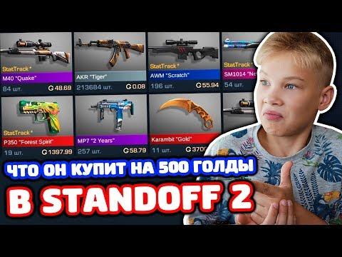 ЧТО КУПИТ ПЛЕМЯННИК НА 500 ГОЛДЫ В STANDOFF 2!?