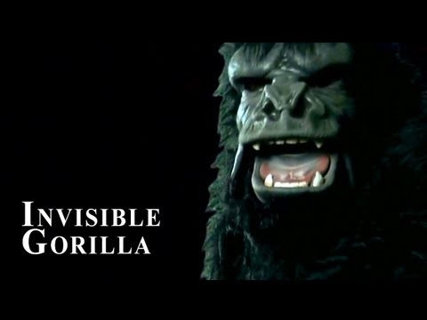 The Invisible Gorilla (featuring Daniel Simons) - Regional EMMY Winning Video
