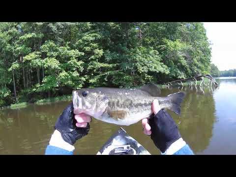 Kayak Fishing Burke Lake Fairfax County Virginia May 19, 2019