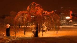Municipiul Codlea-Sarbatori de Iarna