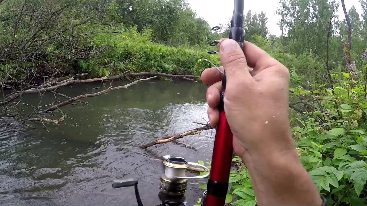 Путеводитель по трофейной рыбалке