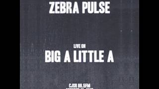 Zebra Pulse Live on Big A Little A  (October 12, 2013 CJSR 88.5FM)