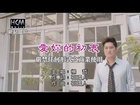 楊哲-愛妳的初衷【KTV導唱字幕】