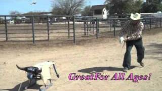 The Original Fast Lane Roping Dummy By Fast Lane Rodeo