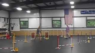 """Lamesa--qcdtc Agility Trial 7/6/13 Excellent Jumpers 8"""""""