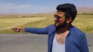 ZİYNET SALİ HOPPALA (VİNE,NEFES ALSIN YETER,KOMEDİ)
