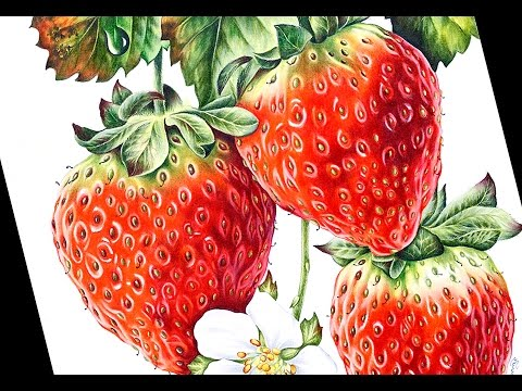 Pictures Of Strawberries To Colour In