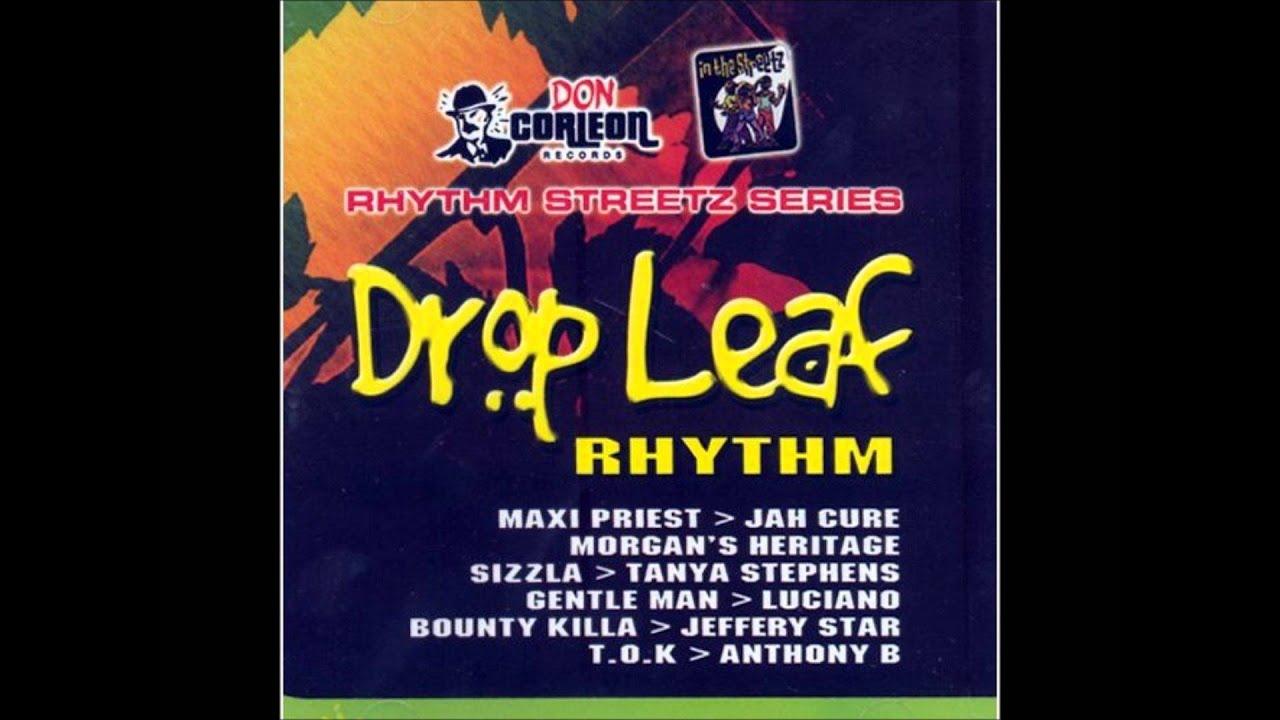 Drop Leaf Riddim (Instrumental Version)