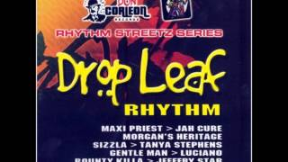 Drop Leaf Riddim (Instrumental Version)
