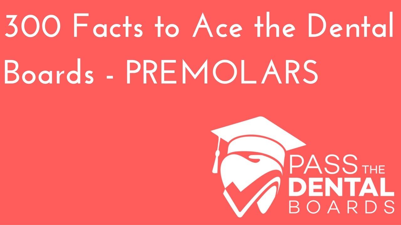 300 Dental Anatomy Facts PART 4 - PREMOLARS - NBDE Part 1 - YouTube