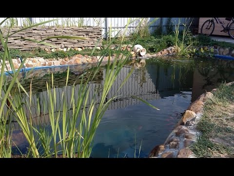 Как называется искусственный водоем