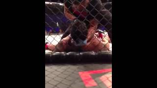 Paul Daley vicious KO at DFC 4