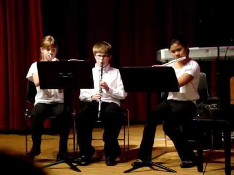 The Collins Middle School Solo and Small Ensemble Concert Jan. 2010
