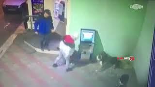 Жительница Керчи пристававшая к собаке едва не лишилась глаза Видео
