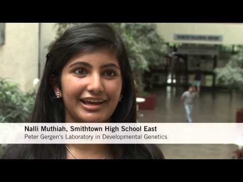 Simons Summer Research Program for High School Students