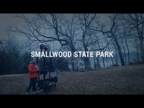 Smallwood State Park Video Montage