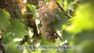 Growers of Great Riverina Wine Australia