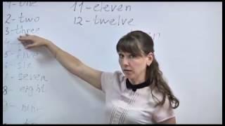 Английский на 5! Урок 6. Тема «Количественные числительные от 10 до 100».  Изучаем урок за уроком!