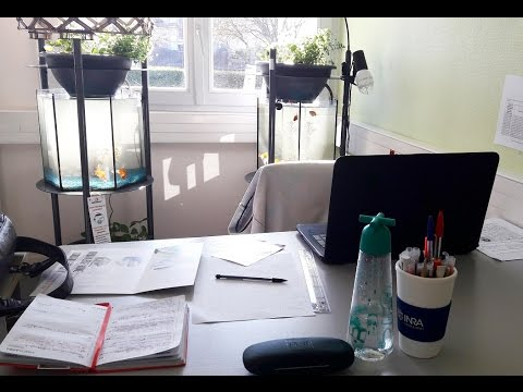 Day In My Life: Chargée De Communication