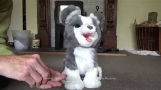 Review of Hasbro Fur Real Ricky the trick loving pup