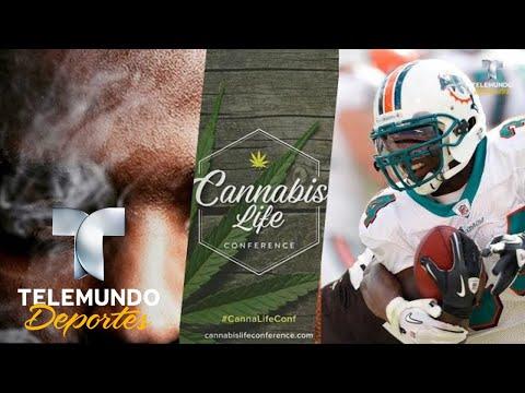 Famoso deportista lanza su propia marihuana | NFL | Telemundo Deportes