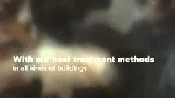 Kansas City Bed Bug Control & Treatment   Eco Advantage Pest Control